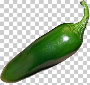 Jalapeño Habanero Serrano Pepper Poblano Bell Pepper PNG