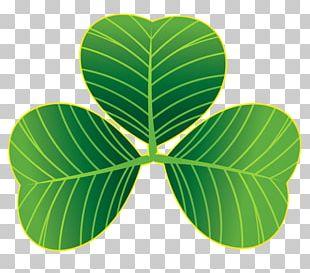 Saint Patrick's Day Shamrock Clover PNG