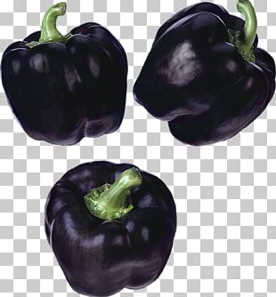 Habanero Bell Pepper Pasilla Chili Pepper Black Pepper PNG