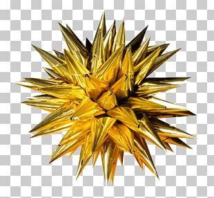 Christmas Decoration Spiky Star PNG