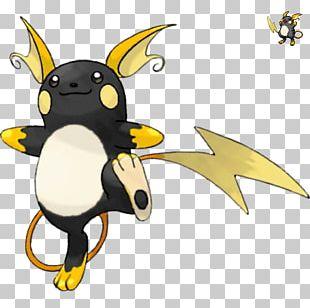 Pokémon X And Y Pokémon GO Pokémon Omega Ruby And Alpha Sapphire Pikachu Raichu PNG
