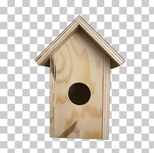 Bird Nest Nest Box House Garden PNG