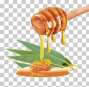 Mānuka Honey Stock Photography Honey Bee Food PNG