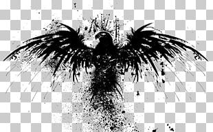 ARMA 2: Operation Arrowhead Black Eagle PNG