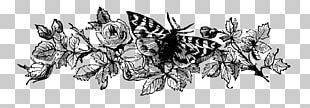 Black And White Graphic Design PNG