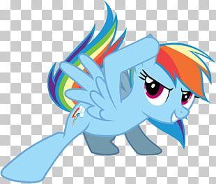 Pony Rainbow Dash Pinkie Pie Rarity Twilight Sparkle PNG