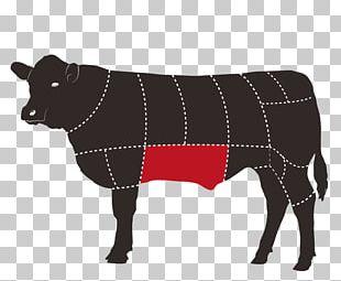 Beef Cattle Cut Of Beef Steak Meat PNG