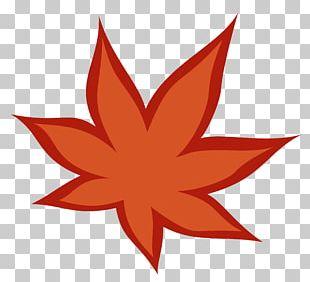 Maple Leaf Symmetry Line PNG