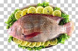 Kipper Iridescent Shark Tilapia Fish Products PNG