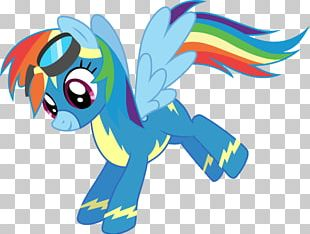 My Little Pony Rainbow Dash Equestria Daily PNG