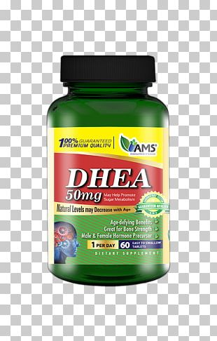 Dietary Supplement Dehydroepiandrosterone Biotin Vitamin Acetylcarnitine PNG