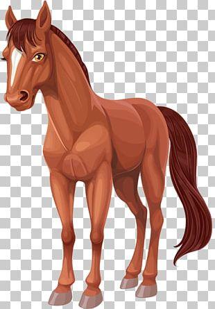 Horse Cartoon PNG