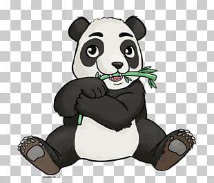Giant Panda PNG