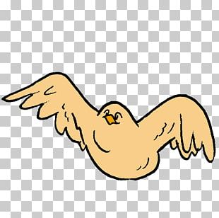 Beak Goose Cygnini Duck PNG