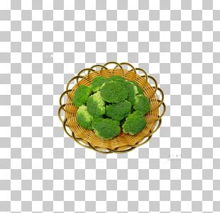Broccoli Icon PNG