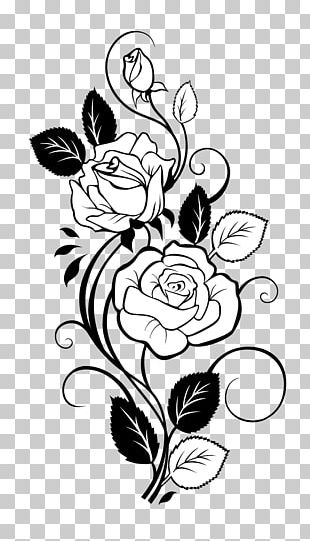 Rose Drawing Vine PNG