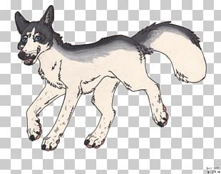 Dog Breed Cat Vulpini Art PNG