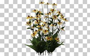 Cut Flowers Floral Design Plant Stem PNG