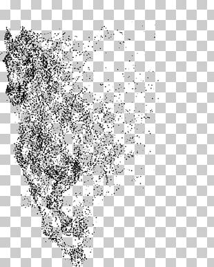 Arabian Horse Horse Gait Illustration PNG