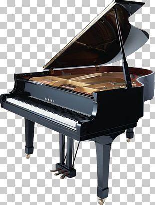 Nampa Grand Piano Musical Instrument Keyboard PNG