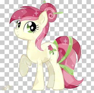 Pony Rainbow Dash Princess Cadance Sunset Shimmer Princess Celestia PNG