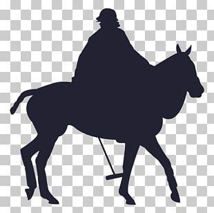 Mule Mustang Tennessee Walking Horse Stallion Calf Roping PNG