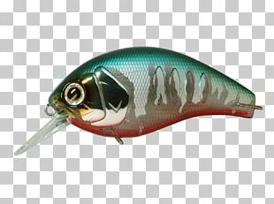 Spoon Lure Korrigan Depth Oily Fish PNG