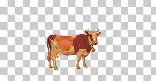 Cattle Baked Milk Goat Chebarkul'skiy Molochnyy Zavod PNG