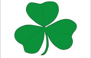 Flag Of Ireland Saint Patrick's Saltire PNG