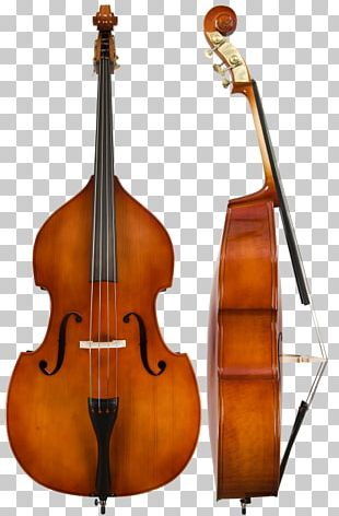 Double Bass Bass Guitar Orchestra Musical Instruments PNG