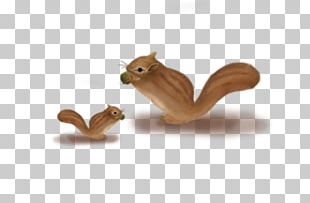 Happy Squirrel Chipmunk PNG