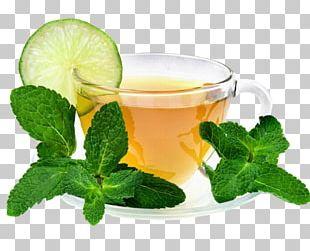 Green Tea Electric Water Boiler Caffè Americano Maghrebi Mint Tea PNG