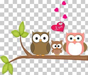 Owl Flowerpot Beak PNG