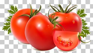 Tomato Soup Tomato Juice Vegetable Tomato Sauce PNG