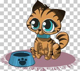 Kitten Cat Open Puppy PNG