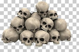Skull Stock Photography Graphics PNG