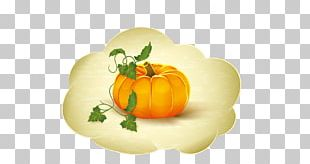 Pumpkin Spice Latte Calabaza Pumpkin Pie Apple Cider PNG