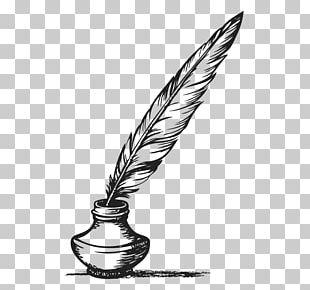 Feather Pen Quill Literatura Europea Y Edad Media Latina Mistborn PNG