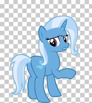 Illustration Horse Design PNG