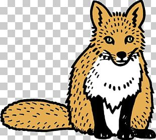 Whiskers Wildcat Red Fox Terrestrial Animal PNG