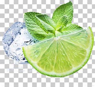 Juice Lemonade Mint Lemon Beebalm PNG