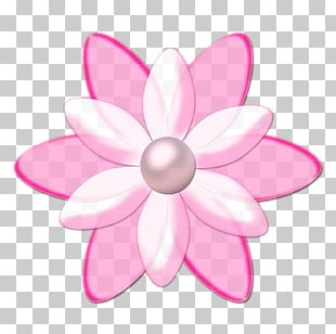 Flower Drawing Animation PNG