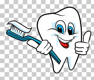 Tooth Brushing Teeth Cleaning Dentistry Human Tooth PNG