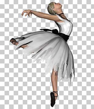 Ballet Dancer Performing Arts Ballet Dancer PNG