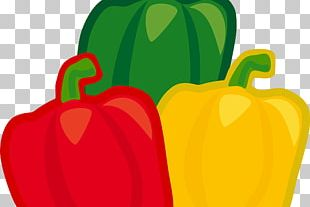 Chili Pepper Bell Pepper Yellow Pepper Piquillo Pepper Stuffing PNG