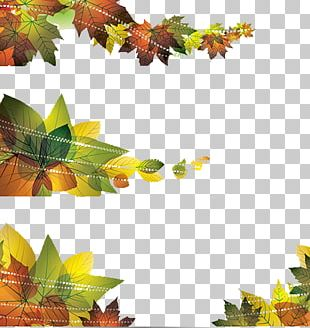Banner Leaf Autumn Illustration PNG