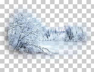 Snow Winter Blizzard Desktop Landscape PNG