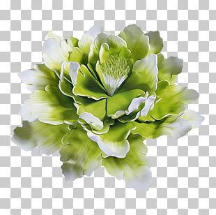 Floral Design Cut Flowers LiveInternet PNG