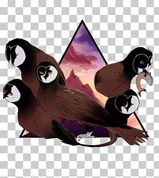Penguin Bird Of Prey Fauna Beak PNG