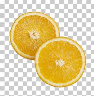 Poster Food Orange Color PNG